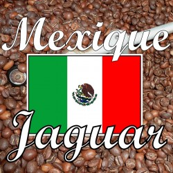 Mexique Siltepec El Jaguar